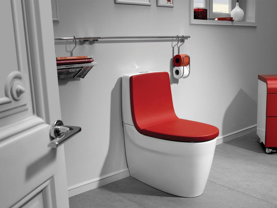 Разные модели туалетов